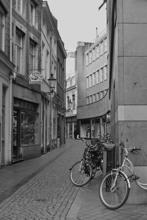 Cykla staden arkivbilder