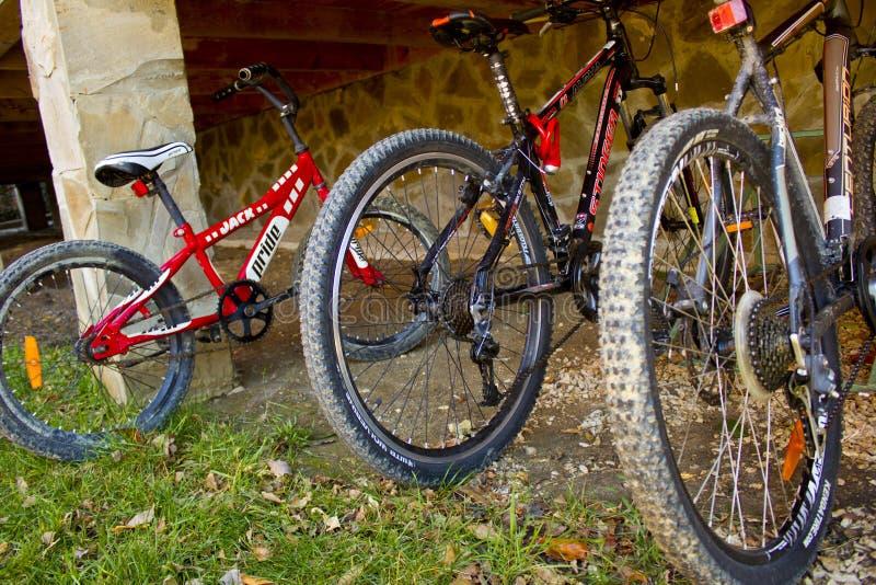 Cyklar för hyra på territoriet av ett feriehem för turister fotografering för bildbyråer