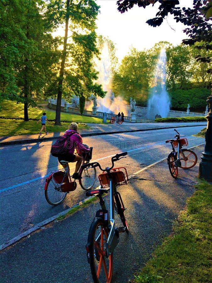 Cyklar, folk, Valentine Park och sunt liv i den Turin staden, Italien royaltyfri bild