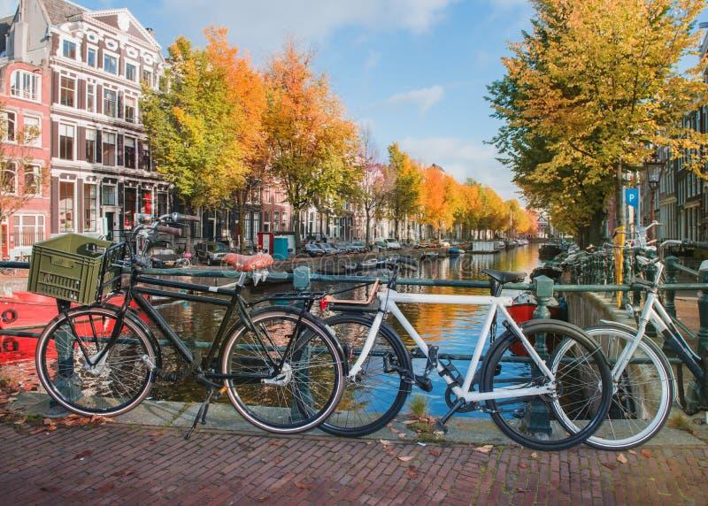 Cyklar på en Amsterdam kanal royaltyfri fotografi
