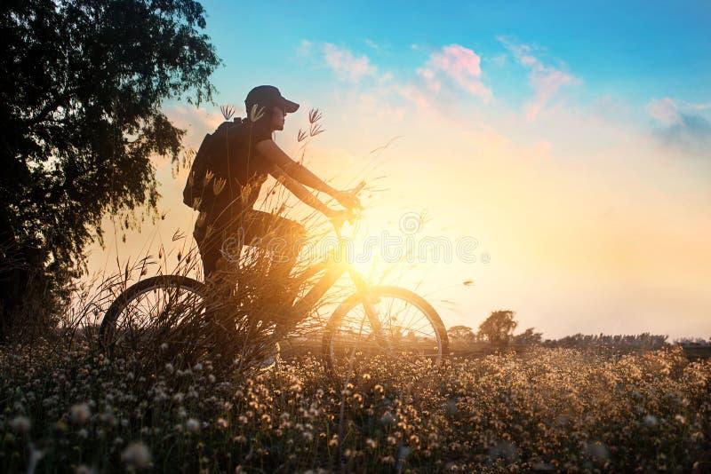 Cyklist på mountainbikeaffärsföretag i härlig blommanatur av sommarsolnedgången royaltyfria bilder