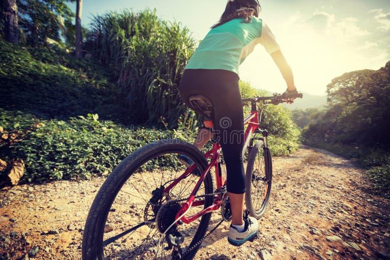 Cyklist som rider en cykel på en naturslinga i bergen arkivfoto
