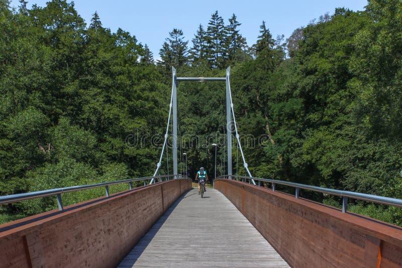 Cyklista na linowym moscie - zielony las i niebieskie niebo obrazy stock
