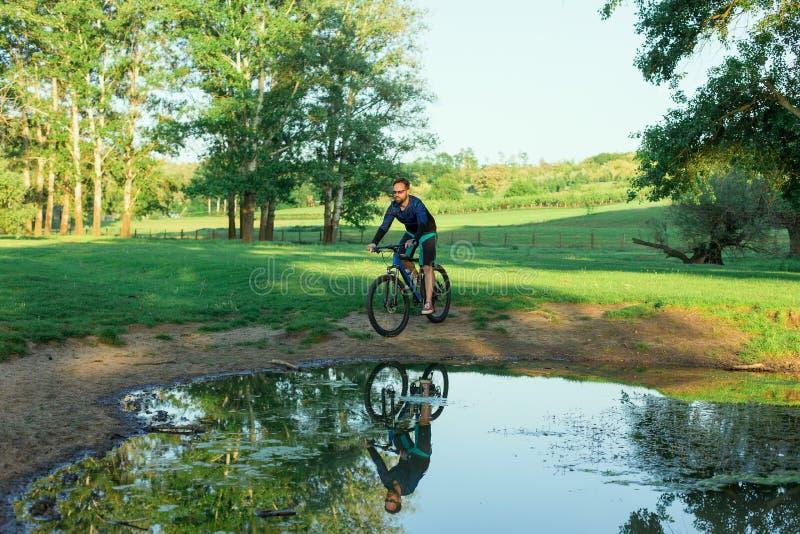 Cyklista w skrótach i bydło na nowożytnym węgla hardtail jechać na rowerze fotografia royalty free