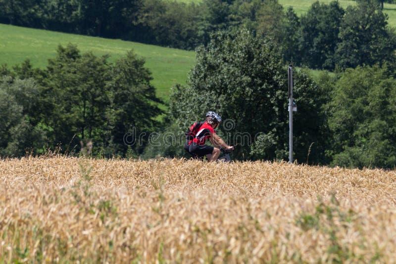 cyklister i en avståndssikt på en solig dag för sommar arkivfoton