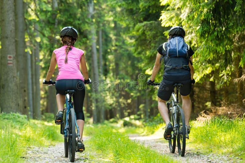 Cyklister i skog som cyklar på spår arkivfoton