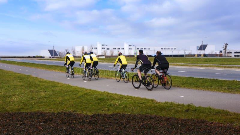 Cyklisty jeździecki rower górski obraz stock