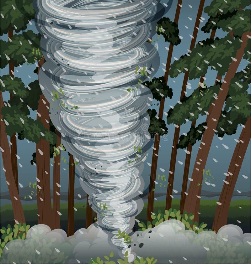 Cyklon slogg det mest firest stock illustrationer