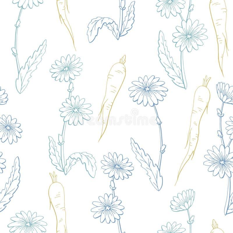 Cykoriowego kwiat rośliny korzenia graficznego koloru tła nakreślenia ilustraci bezszwowy deseniowy wektor ilustracji