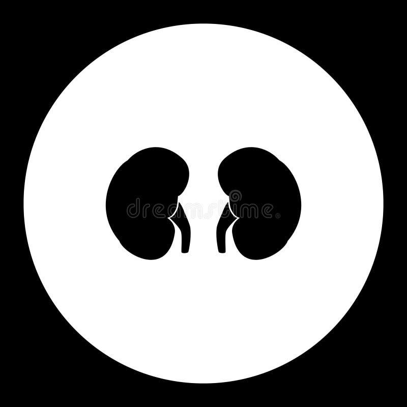 Cynaderki wewnętrznego organu medyczna prosta czarna ikona eps10 ilustracji