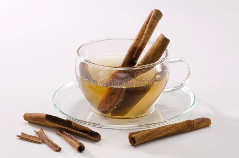 Cynamonowa Ziołowa herbata fotografia stock