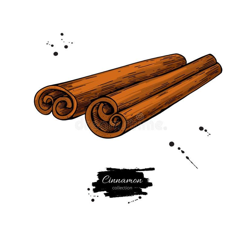 Cynamonowego kija wektoru rysunek Ręka rysujący nakreślenie ilustracji