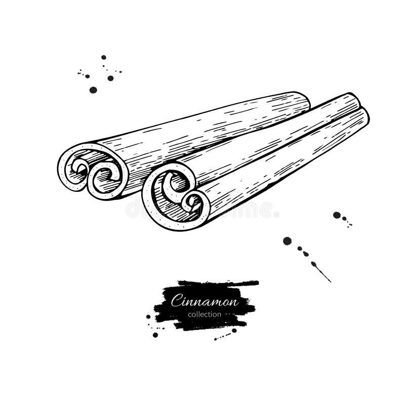 Cynamonowego kija wektoru rysunek Ręka rysujący nakreślenie Sezonowy jedzenie ilustracja wektor