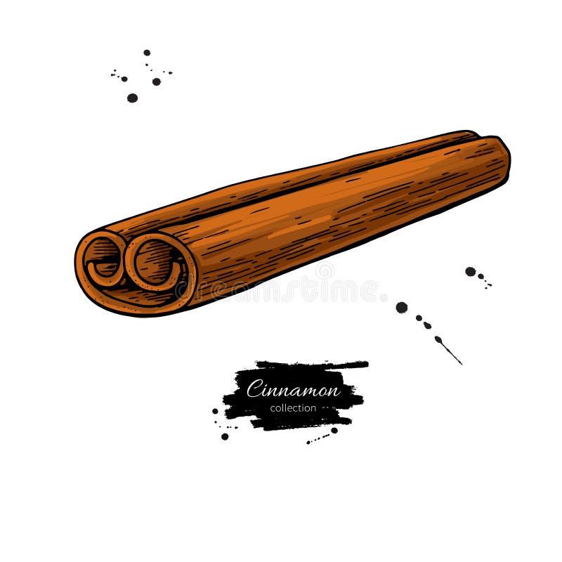 Cynamonowego kija wektoru rysunek Ręka rysujący nakreślenie Sezonowy jedzenie ilustracji