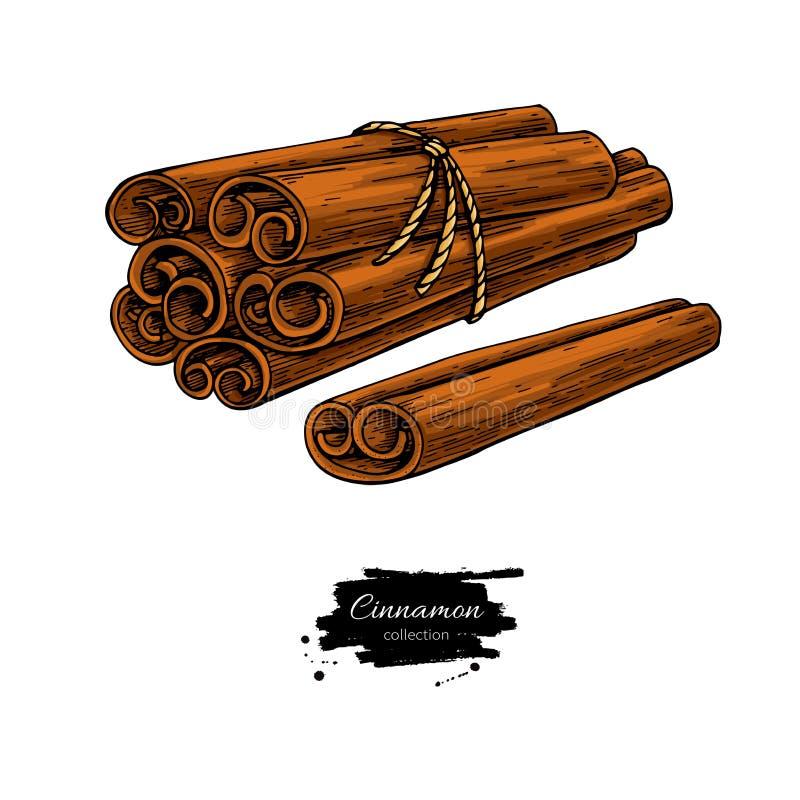 Cynamonowego kija wiązki wektoru wiązany rysunek royalty ilustracja