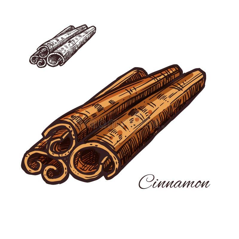 Cynamonowej pikantności nakreślenia rośliny barkentyny wektorowa ikona royalty ilustracja