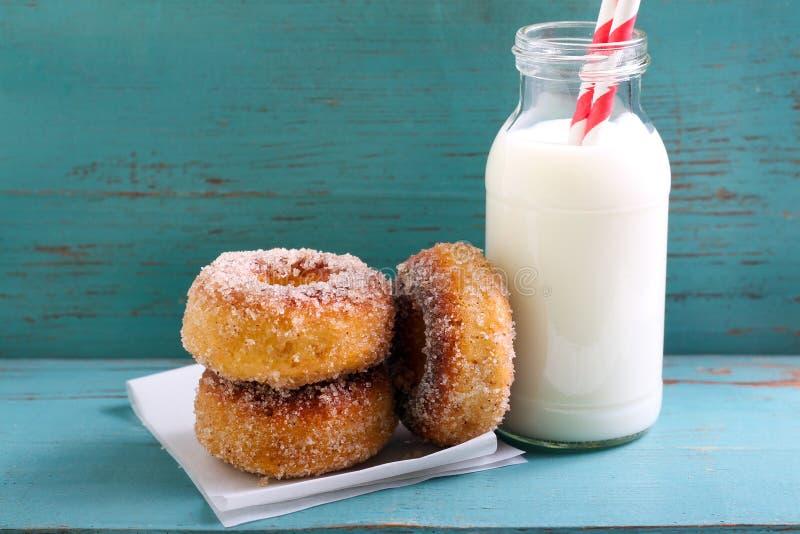 Cynamonowi cukrowi donuts i butelki mleko obrazy royalty free