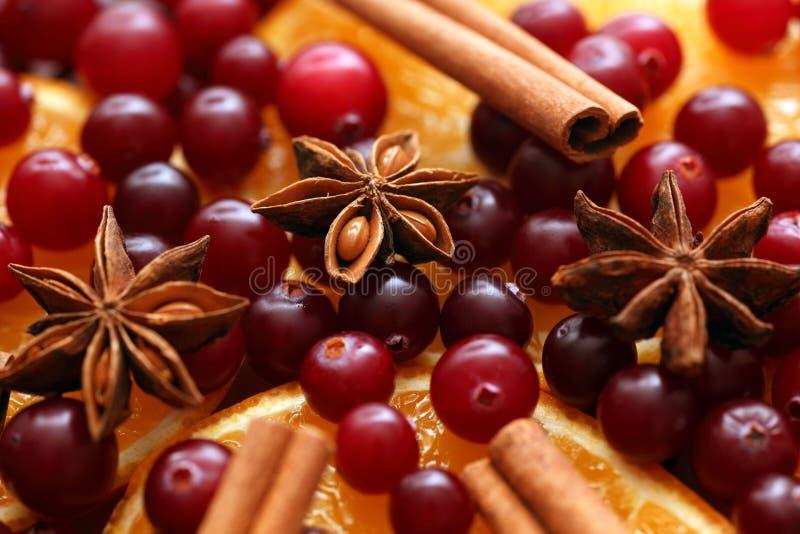 Cynamonowi kije, anyż, pomarańcze plasterki i cranberries, obraz stock