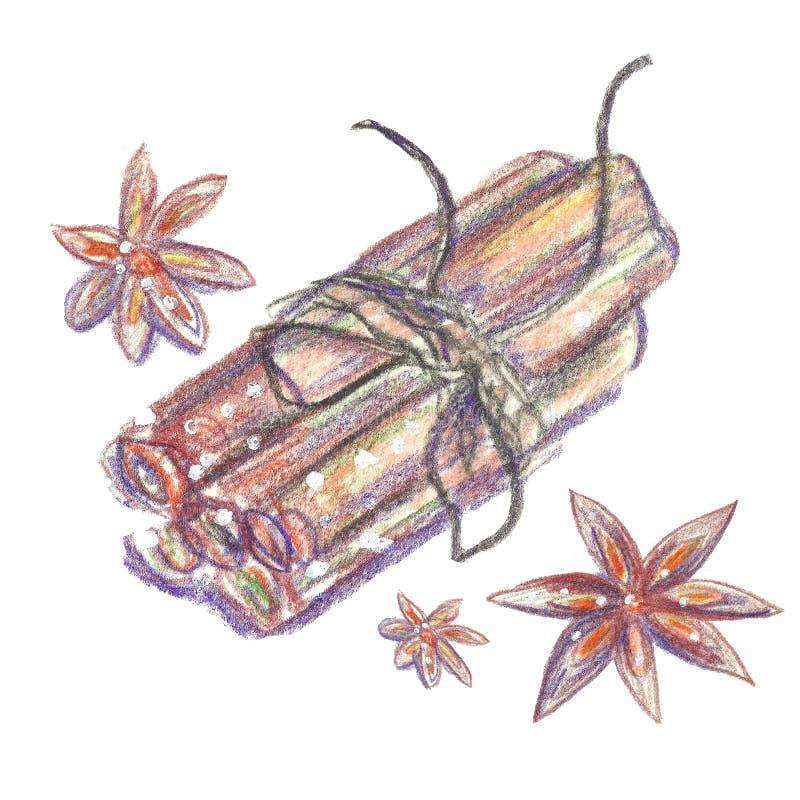 Cynamonowi kije i kardamon ilustracja wektor