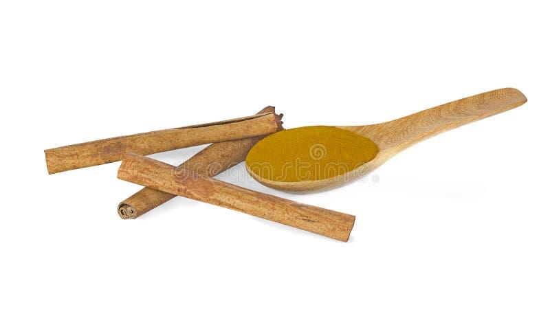 Cynamonowi kije i proszek cynamon w drewnianej łyżce odizolowywają obraz stock