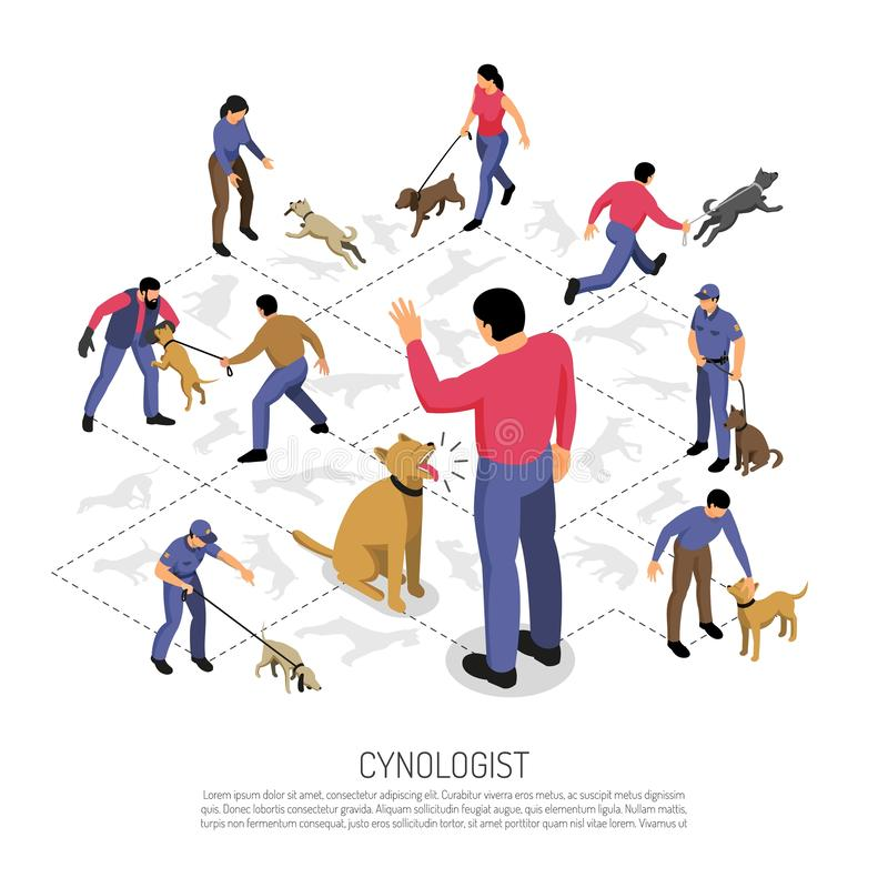 Cynologist Isometric Infographic Composition. Cynologyst dog training isometric infographic composition with police service specific tasks commands responding stock illustration
