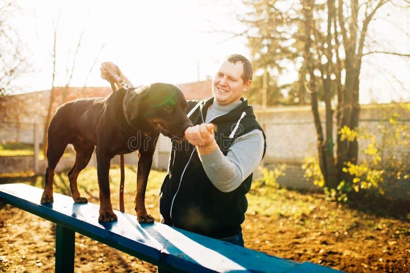 Cynologist obwąchania stażowy pies na boisku zdjęcia stock
