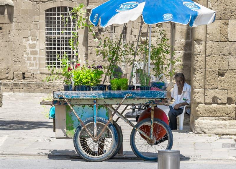 CYPERN NICOSIA - JUNI 10, 2019: En liten blomsterhandel på hjul på en stadsgata Äldre person som säljer blommor som sitter bredvi arkivbild