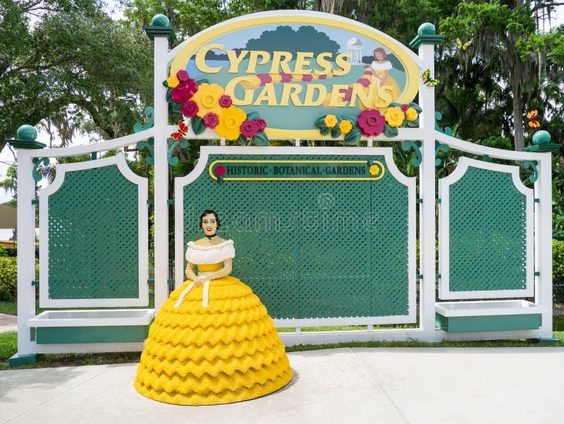 Cypress cultiva un huerto la Florida foto de archivo