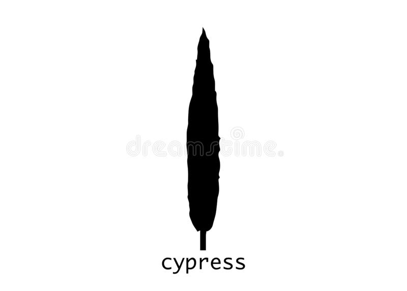 Cypress icon. Simple illustration of cypress vector icon for web. Italian silhouette cypress trees the typical tuscan landscape. V royalty free illustration