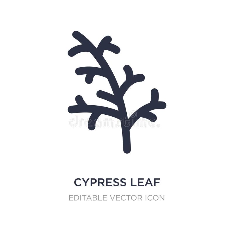 Cypress leaf icon on white background. Simple element illustration from Nature concept. Cypress leaf icon symbol design vector illustration