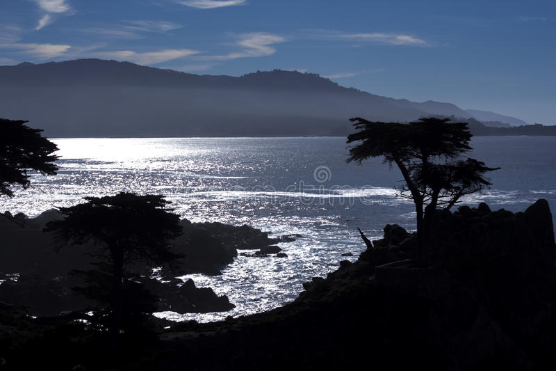 Cypress solitário, movimentação de 17 milhas fotos de stock