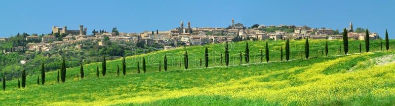 Cypressgränd på Montalcino fotografering för bildbyråer