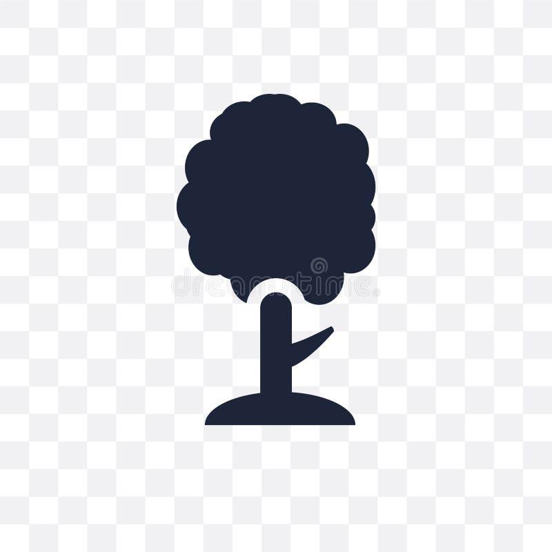 Cyprysowa przejrzysta ikona Cyprysowy symbolu projekt od natury coll royalty ilustracja