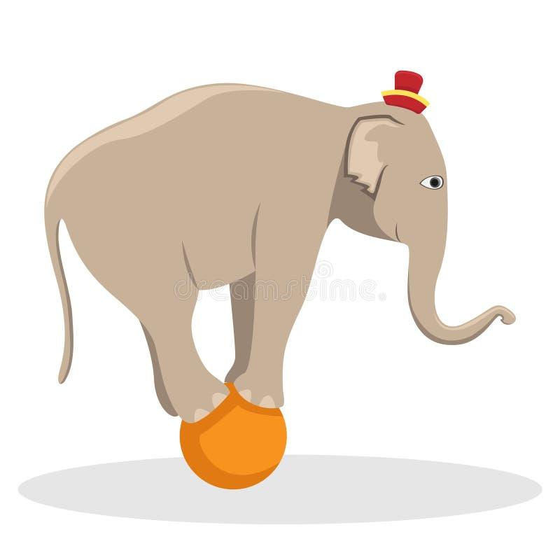 Cyrka wyszkolony słoń na piłce Płaska wektorowa ilustracja ilustracja wektor
