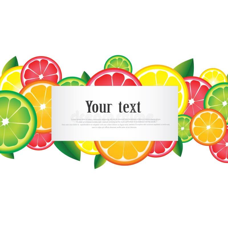 Cytrus owoc ornamentu rama z przestrzenią dla teksta na białym tle ilustracji