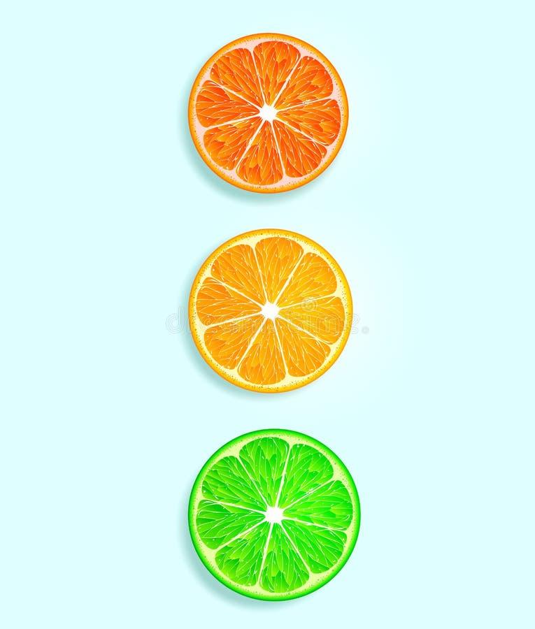 Cytrus owoc w postaci świateł ruchu obrazy stock