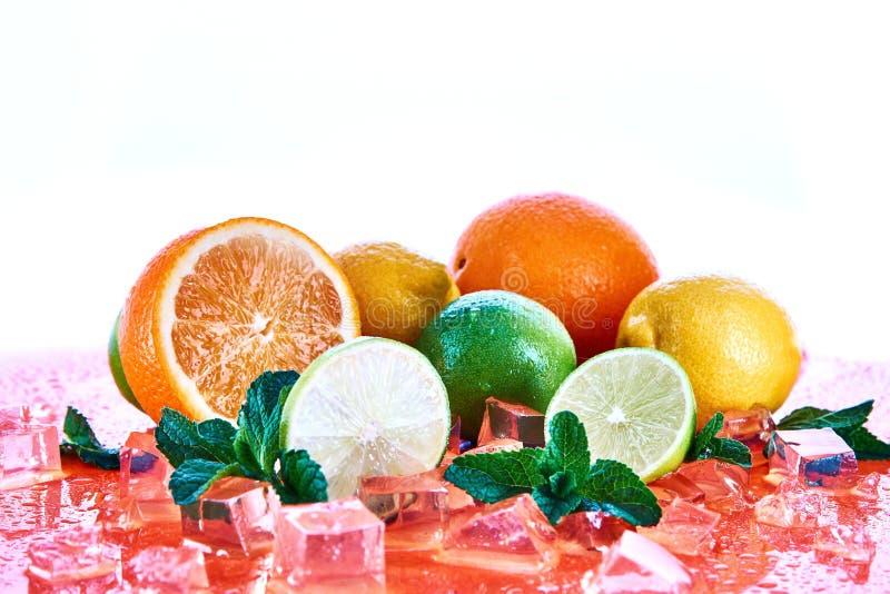Cytrus owoc: wapno, pomarańcze, cytryna z mennicą i kostka lodu na koralowym tle, Świeże lato owoc obrazy stock