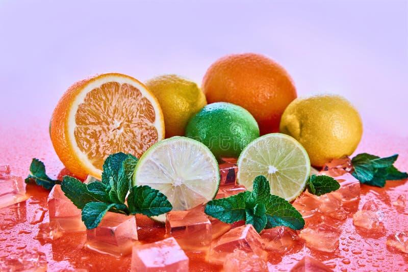 Cytrus owoc: wapno, pomarańcze, cytryna z mennicą i kostka lodu na koralowym tle, Świeże lato owoc fotografia royalty free