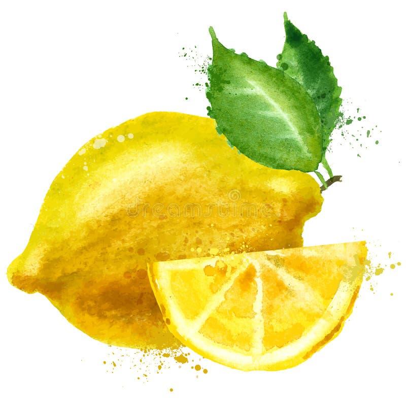 Cytryna loga projekta wektorowy szablon owoc lub jedzenie royalty ilustracja