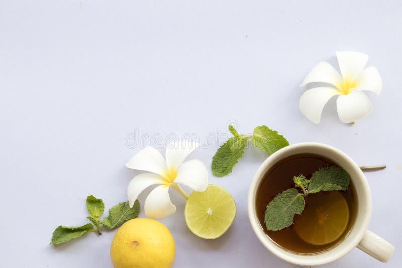 Cytryna, miętowy ziołowy dla kaszlowego bolesnego gardła i kolorowe pigułki, zdjęcia royalty free