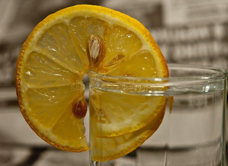 Cytryna plasterek na małym ajerkoniaka szkle ajerówka zdjęcia stock