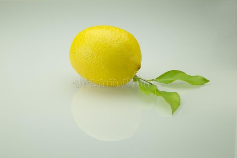 Cytryna z liściem zdjęcie stock