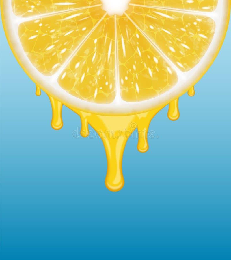 Download Cytryny świeże Kawałki żółtego Ilustracja Wektor - Ilustracja złożonej z pokrywa, napój: 53775040