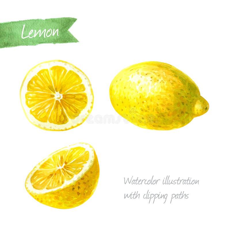 Cytryny cała i pokrojona odosobniona akwareli ilustracja zdjęcia stock