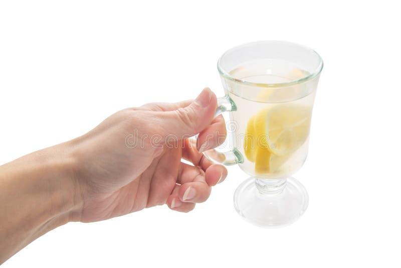 Cytryny herbata z jasnym szklanym kubkiem w żeńskiej ręce na białym odosobnionym tle fotografia royalty free