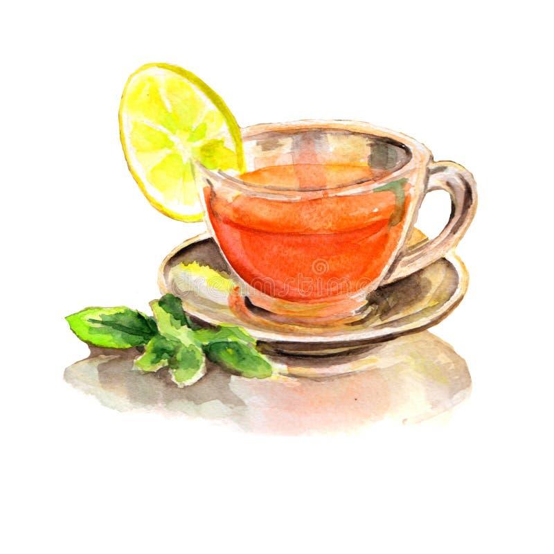 Cytryny mennicy herbata w przejrzystej szklanej filiżance Ręka rysująca akwareli ilustracja royalty ilustracja