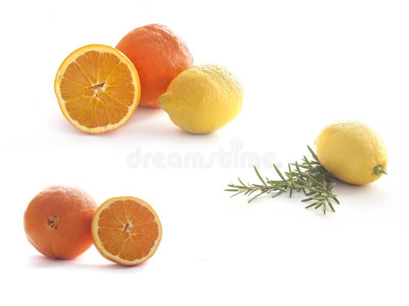 cytryny pomarańcz organicznie rozmarynowy biel fotografia stock
