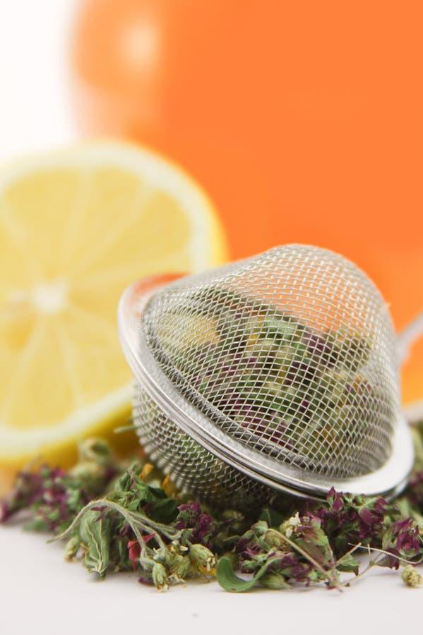 cytryny ziołowa miodowa herbata zdjęcie stock