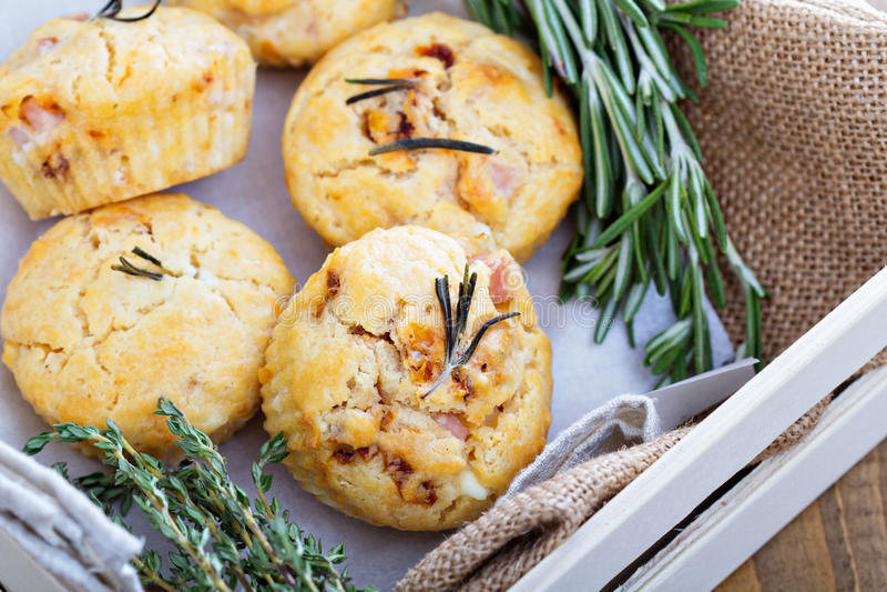 Cząberów muffins z ziele, pomidorami i baleronem, fotografia royalty free
