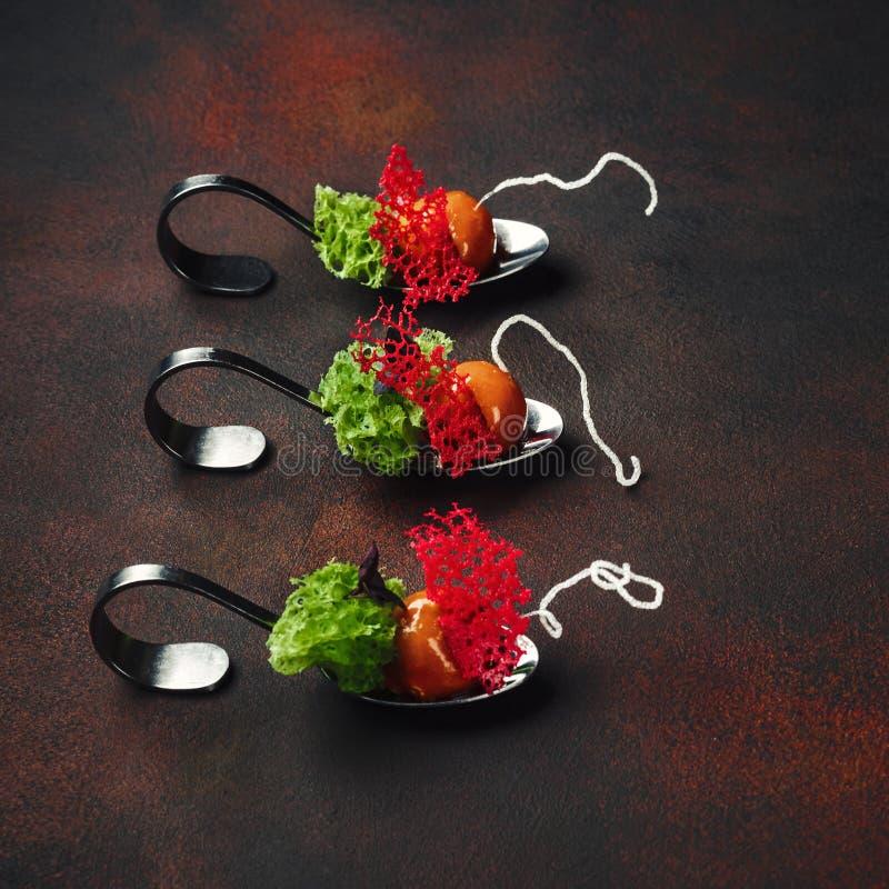 Cząsteczkowa nowożytna kuchni galantyny kaczka w łyżkach na ośniedziałym tle zdjęcia stock